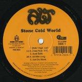 ALT / Stone Cold World
